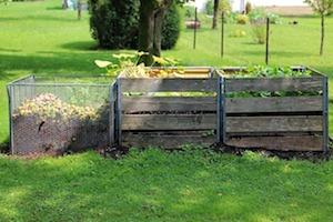 Comment planter des concombres dans votre jardin